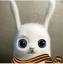 Аватар пользователя Анастасия