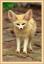 Аватар пользователя 1Svetlana1