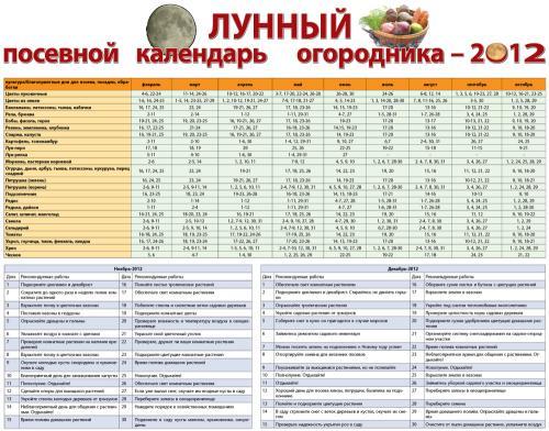 календарь посадок комнатных растений
