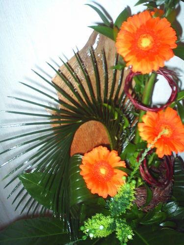 Фото герберов цветов 7