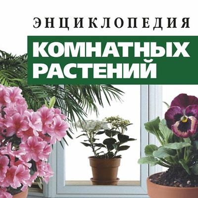 Энциклопедия комнатных растений с фотографиями