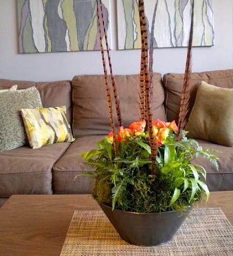 Благоприятные дни для пересадки комнатных цветов: правила и условия